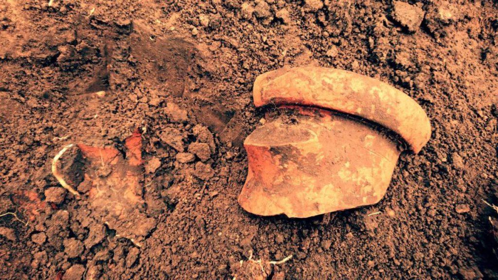 уламки амфори з розкопок