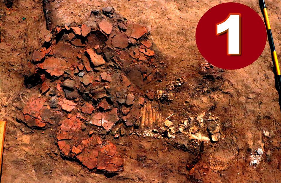 """Як """"оживає"""" археологічний експонат"""